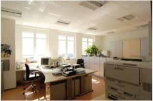lichtdurchflutetes Büro